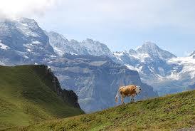 Перевалы Швейцарии История