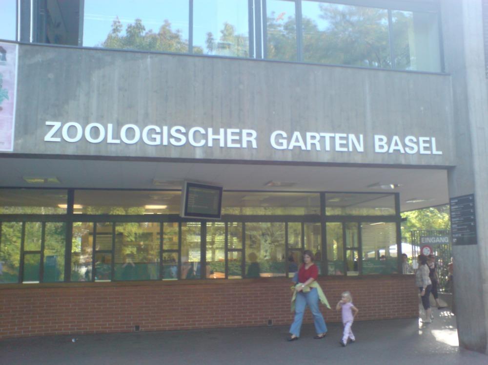 Зоопарк Базель. Вход