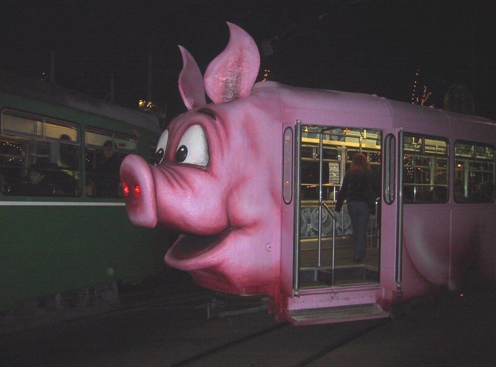 Вазель трамвай в зоо