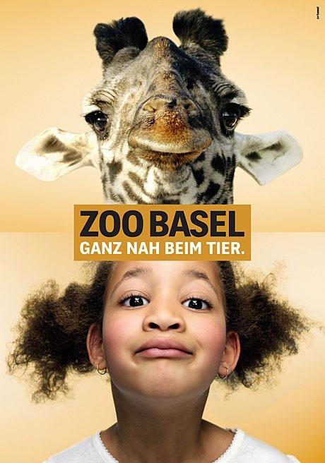 Зоопарк Базель. Жираф. Шутка